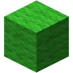 黄绿色羊毛