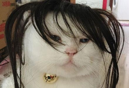 爆笑囧图:放假在家四五天不洗头的你……