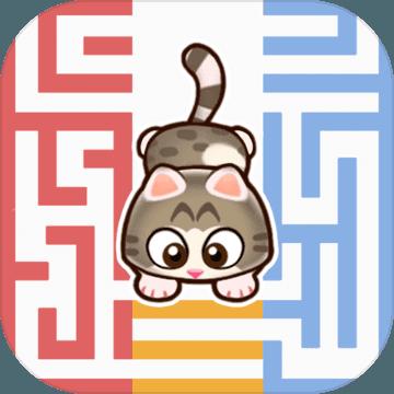 迷宫猫-Rookie