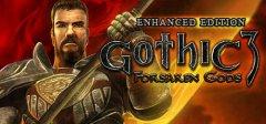 哥特3:被遗忘的神强化版