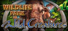 野生动物园-野生动物