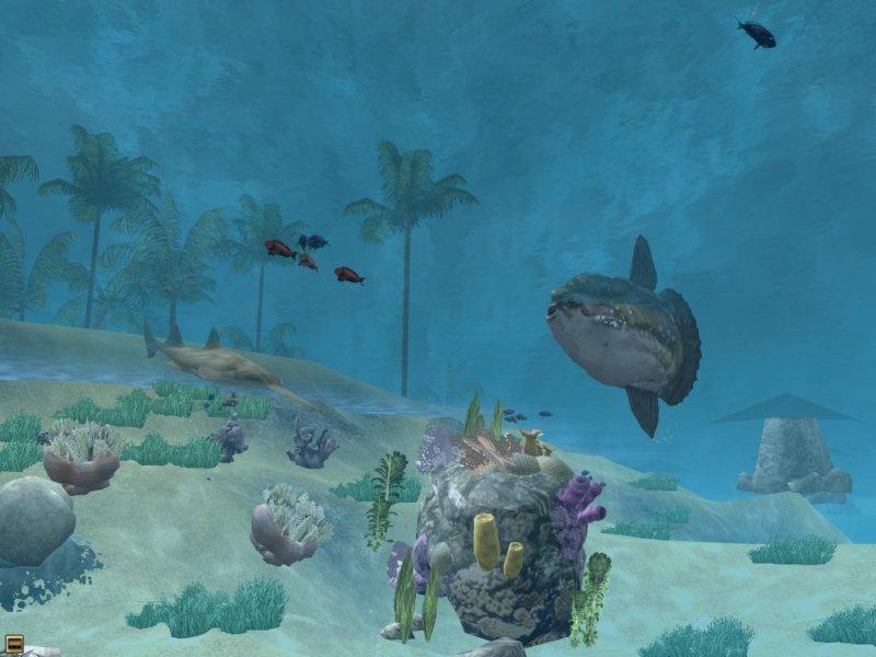 野生动物园2 - 海洋世界截图第4张