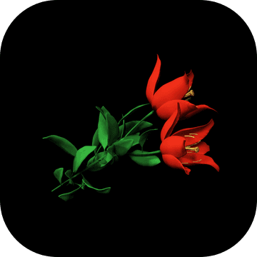 Escape Game: Red Flower