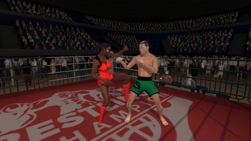 无规则摔跤截图第3张